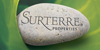 Surterre Properties